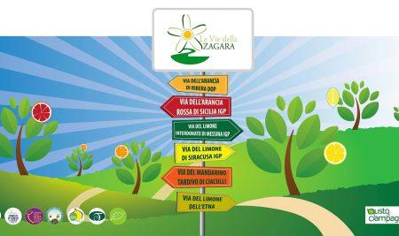 Le Vie della Zagara – Un modello di Promozione territoriale e Turismo relazionale in Agricoltura